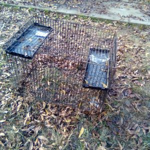 Dog Kennel for Sale in Fresno, CA