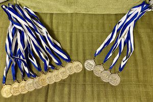 LOT OF 11 METAL 1ST PLACE GOLD AND 4 2ND PLACE SILVER PRINCESS CRUISE NECK METALS AWARDS for Sale in Glendale, AZ