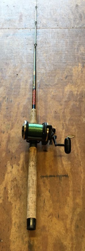Fishing Rod - Daiwa SL30SH with Aerial Rod for Sale in Randleman, NC