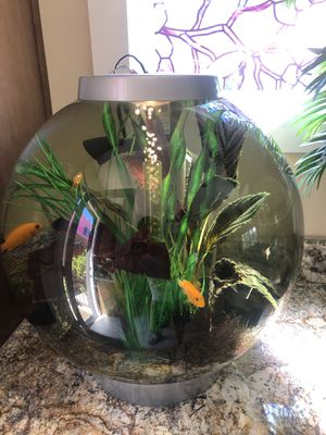 16 Gallons Biorb Fish Aquarium Tank for Sale in San Diego, CA