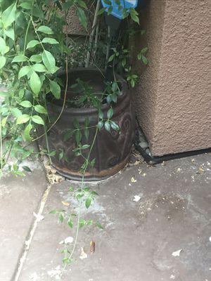 Flower pots (2) for Sale in Las Vegas, NV