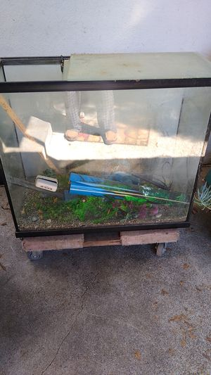 ,75gallon fish tank for Sale in Hayward, CA