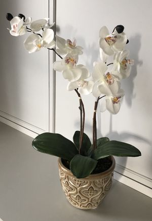 """Faux 21"""" Potted Orchid for Sale in Culpeper, VA"""