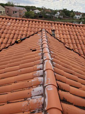 Tile, Shingle for Sale in Miami, FL
