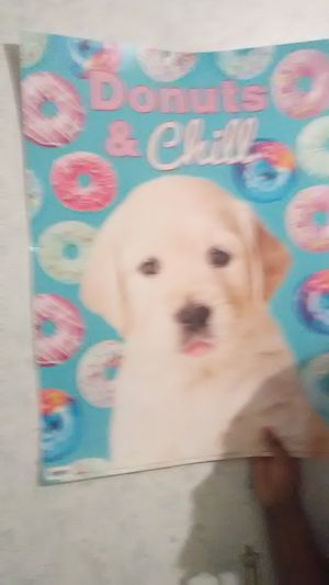 Puppies donuts and chill for Sale in Gladys, VA