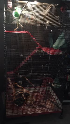 Large custom made cage for Sale in Denver, CO