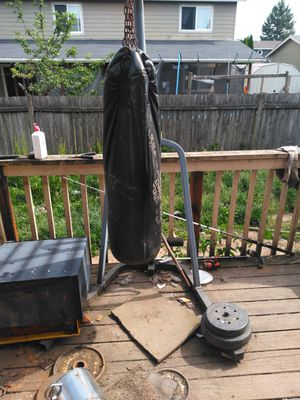 Punching bag for Sale in Gervais, OR