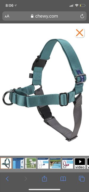 Teal easy walk no pull harness small for Sale in Winston-Salem, NC