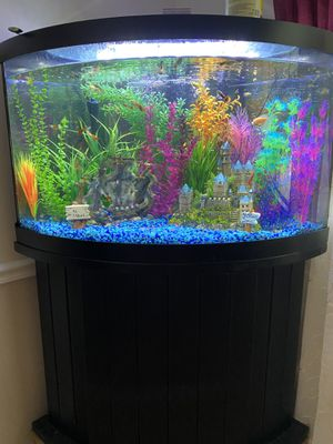 54 gallon aquarium for Sale in Sykesville, MD