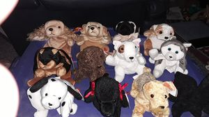 12 Beanie Babies dogs for Sale in Columbus, OH
