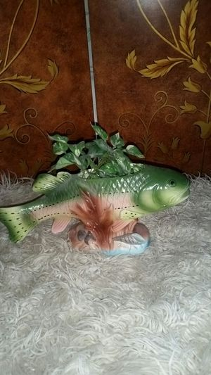 Fish plant holder for Sale in Caseyville, IL