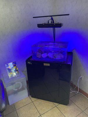 Zero edge aquarium for Sale in Kearny, NJ