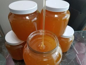Local raw honey, 2020 for Sale in Auburn, WA