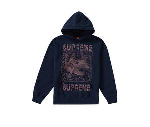 Supreme dove hoodie 2019 week 2 drop. size M for Sale in Las Vegas, NV