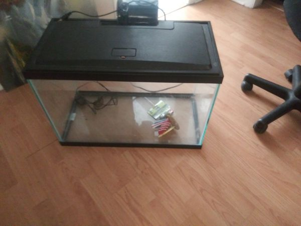 20 Gallon Aquarium with filter