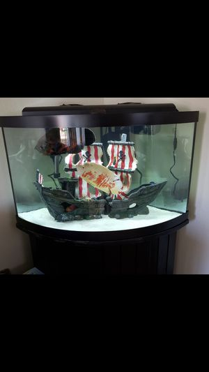Fish tank and Fish for Sale in Dublin, CA