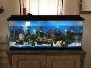 Fish Tank (55 Gallons) for Sale in Las Vegas, NV