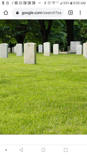 Cemetery Plots for Sale in Lansing, MI