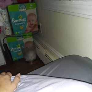 Size 1 Baby-dry Diapers for Sale in Revere, MA