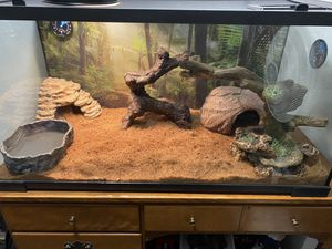 Snake cage with ball python included 400 dollars for Sale in Wadsworth, IL