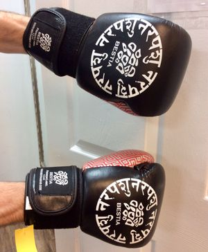 Boxing Gloves Bestia for Sale in Lithia, FL