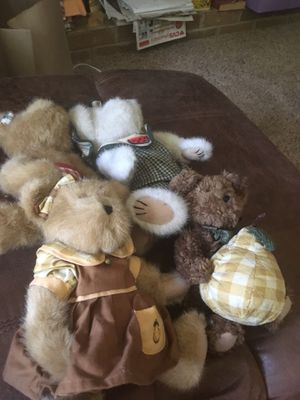 Bears for Sale in East Peoria, IL