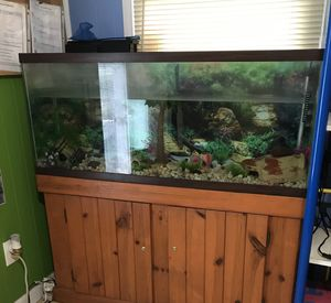 55 gallon Fish Tank & stand with or without accessories for Sale in Brentwood, NC