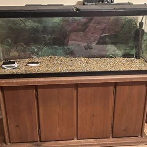 50 Gallon Fishtank With Stand And Filters for Sale in Wheeling, IL