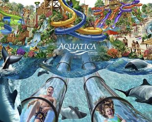 Discounted Aquatica tickets $50 Each for Sale in Orlando,  FL