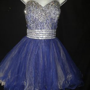 Aspeed Quinceanera Party Pictures Plus Size Dress for Sale in Garland, TX