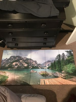 Large 5 panel wall art. Good condition. for Sale in Charlotte, NC