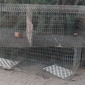 Cages for Sale in Oro Grande, CA
