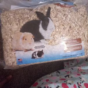 Aspen Bedding For Critters for Sale in Fresno, CA