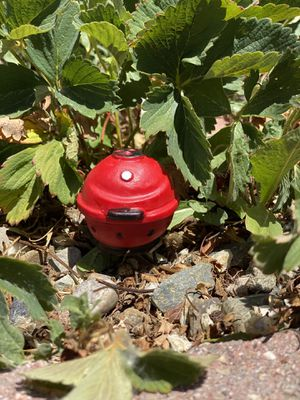 Miniature Red BBQ Grill for Gnome or Fairy Garden for Sale in Bloomfield, NM