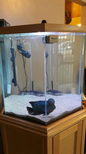 FISH TANK for Sale in Alhambra, CA