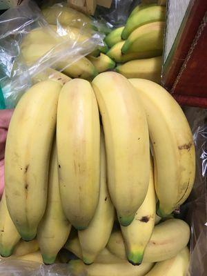 Platano manzano for Sale in Everett, WA