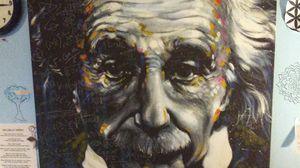 Einstein picture for Sale in Carnation, WA
