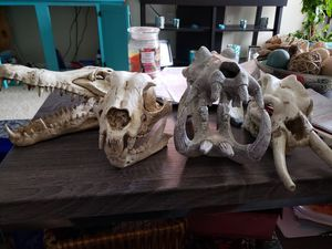Fish aquarium skulls Decor for Sale in Morrisville, NC
