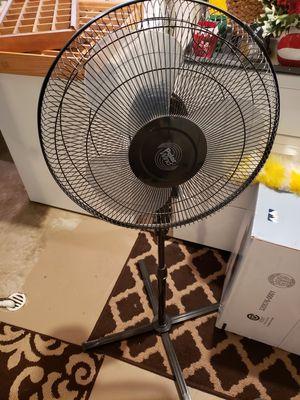 Black tall Oscillating fan for Sale in Flat Rock, MI