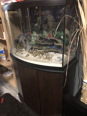 Fish tank! for Sale in Lanham, MD