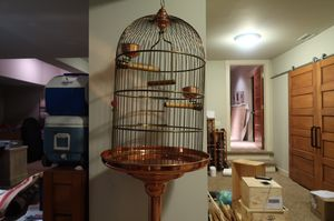 Handmade Luxury Bird Cage for Sale in Pikesville, MD