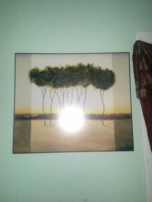 Pictures for Sale in Moline, IL