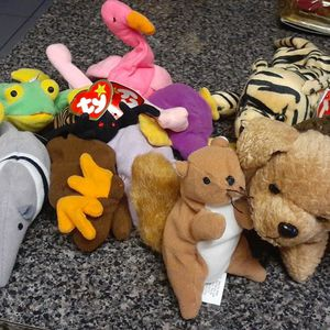 Beanie Babies for Sale in Port Richey, FL