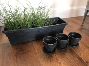Dry Brushed Planter Set! for Sale in Columbus, OH