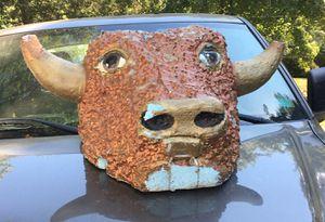 Bull Head for Sale in Wichita, KS