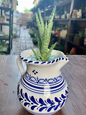 Blue and white jug vase for Sale in Homestead, FL