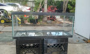 Fish tank are fish or a reptile for Sale in Hialeah, FL