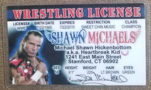 Shawn Michaels WWF WWE souvenir novelty card for Sale in Three Rivers, MI