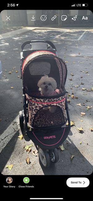 Dog Stroller for Sale in Orlando, FL