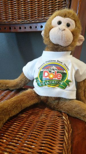 Dole Pineapple Stuffed Spider Monkey for Sale in Los Angeles, CA